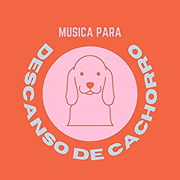 Música para Descanso de Cachorro: Música Relaxante Instrumental