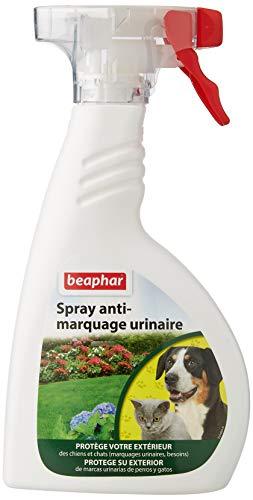 BEAPHAR – Spray anti-marquage urinaire du chien & chat pour extérieur – Contre les comportements indésirables (marquage urinaire/besoins) – Protège votre extérieur (façade/terrasse/véhicules) – 480 g