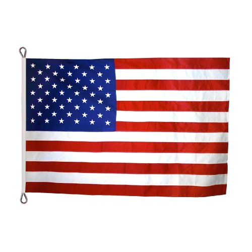 Annin Flagmakers Model 2750 American Flag Tough-Tex The Strongest, Longest Lasting, 8x12 ft, 100% Made in USA with Sewn Stripes, Embroidered Stars and Roped Heading