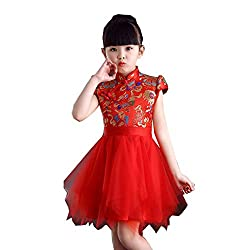 F&W WF Dance Costume Dress Cheongsam Musical Instrument Costume Princess Skirt Tutu Girls Dance Skirts (Color : Red, Size : 140)