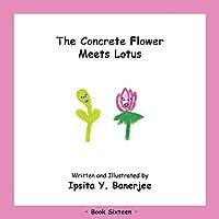 The Concrete Flower Meets Lotus: Book Sixteen