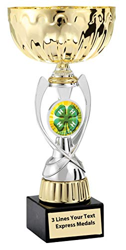 Express Medals Gold - Silver 4H Metal Trophy Plastic Stem Cup Marble Base and Personalized Engraved Plate