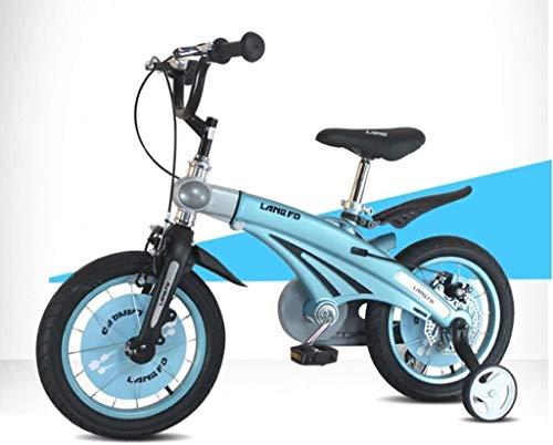GAOTTINGSD Bicicletas para niños Conveniente bicicleta infantil, 12/14/16 pulgadas niño bebé bicicleta niño 2-3-6 años niña aleación de magnesio carro de bebé cómodo (color: azul, tamaño: 12 pulgadas)