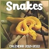 Snakes Calendar 2021-2022: April 2021 Through December 2022 Square Photo Book Monthly Planner Snakes, small calendar