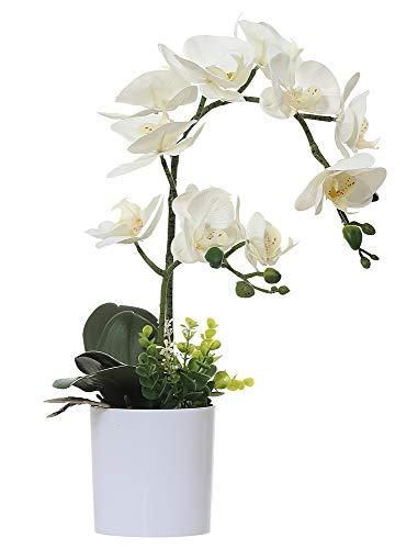Olrla weißer künstlicher phalaenopsis-orchideen-Bonsai mit Keramik-vase Hochzeit Garten inneneinrichtungen (White 2)