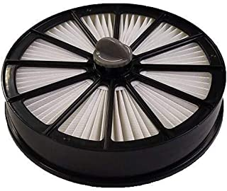 Pleated Filter w/Pin for Pet Hair Eraser Lift-Off | 1612631