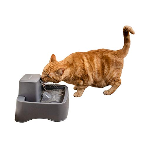 PetSafe Drinkwell Cat Fountains Adjustable Stream, Fresh Water Dispenser, Easy to Clean Design, 2 Filters Included