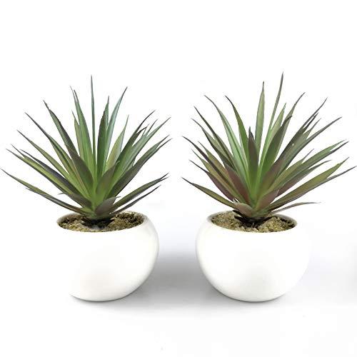 TUOKORGREEN Small Artificial Plants in Ceramic Pots, Faux Greenery 2 pcs Set 3.5 x 6.7?D x H?