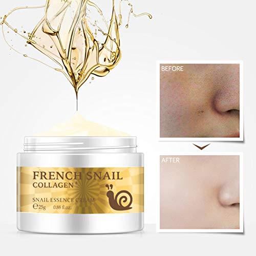 ColorfulLaVie Snail Essence Gesichtscreme, Hyaluronsäure Feuchtigkeitsspendende Anti-Falten-Anti-Aging-Kollagen Repairing Face Cream