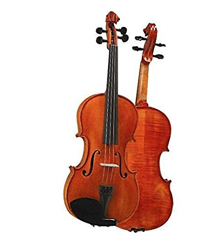 D Z Strad Violin Model 101 with Solid Wood with Case, Bow, and Rosin (4/4 - Full Size)