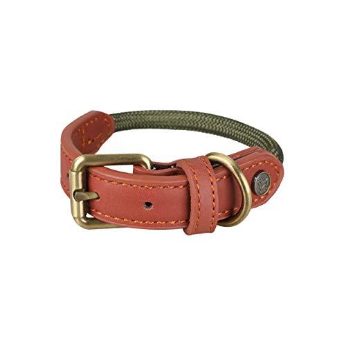 Michur Sherpa Green Hornet, Hundehalsband Leder Verstärkung und Tau, Rund mit Polyamidkern und aus Nylon geflochten, Halsband für Hunde in verschieden Größen erhältlich.