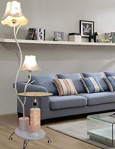HYY-YY Floor Lights Iron stoffen kap moderne eenvoud kan worden ingesteld Koffietafel Floor Lights for Living Room Fashion Ideeën Slaapkamer Bedside Lamp inbegrepen, Zwart, voetschakelaar