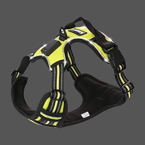 Gasky LED Dog Harness No Pull Pet Safe Vest Harness