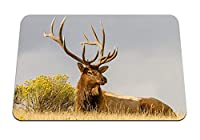 22cmx18cm マウスパッド (鹿草うそ角) パターンカスタムの マウスパッド