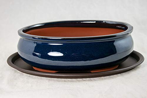 Oval Bonsai / Succulent Pot 10'x 7.5'x 3.25' + Tray + Mesh - Dark Blue Stain