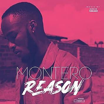 Reason (feat. Montero)