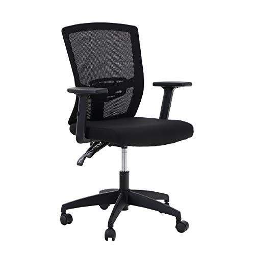 ALPHA HOME Office Chair Ergonomic Home Desk Chair Mid Back Mesh Computer Chair with Lumbar Support Executive Stool with Adjustable Armrest & Seat Cushion Rolling Swivel Desk Chair-Capacity 300 lbs