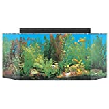 SeaClear 26 gal Flat Back Hexagon Acrylic Aquarium Combo Set, 36 by 12 by 16', Clear