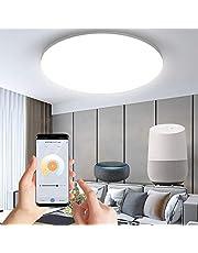 Anten Smart WIFI LED Plafondlamp 24W 1920LM Dimbaar Binnen Inbouw Plafondlamp Waterdicht IP20 Aogled, Voor Slaapkamer Badkamer Keuken Hal Kantoor Kantoor Eetkamer