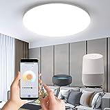 Anten WiFi Plafón Techo 24W, Compatible Alexa/Google Home, Control de Aplicación, Regulable Blanco Cálido a Frío 3000 - 6500K Lámpara Led Techo Inteligente para Dormitorio, Salón, Cocina, Baño
