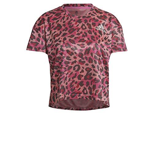 adidas Camiseta Modelo P.Blue tee Marca