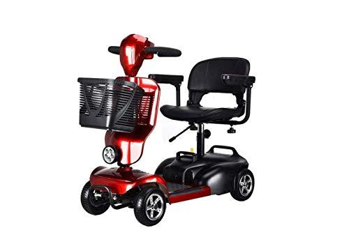 SEESEE.U Motorrad Mini Folding Elektroauto, Erwachsenen Dreirad Mini Pedal Elektroauto, tragbare Faltbare Lithiumbatterie Reisebatterie Auto, Outdoor Motorrad Reiserad, Windschutzscheibe, 30A