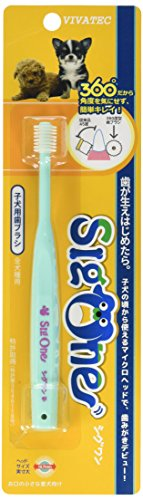 シグワン 子犬用 歯ブラシ アクアブルー