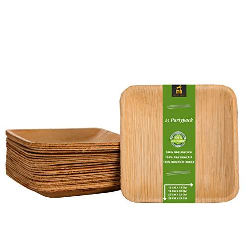 Michael Heinen Piatti biologici usa e getta, in foglia di palma, ecologici, 100% compostabili, grandi