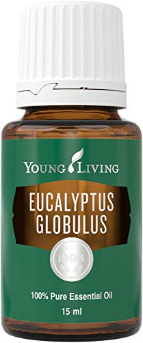 Eucalyptus Globulus Essential Oil 15ml by Young Living Essential Oils