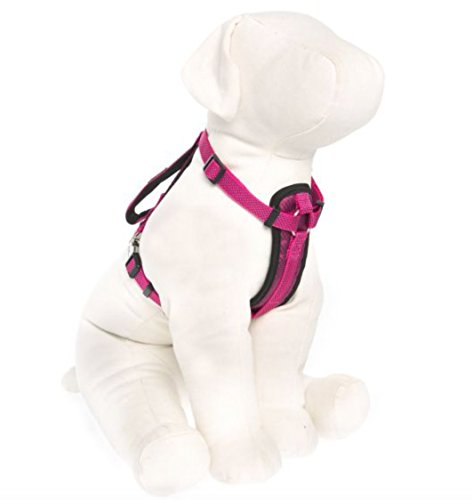 KONG Comfort Padded Chest Plate Dog Harness Offered by Barker Brands Inc.(Large, Pink)