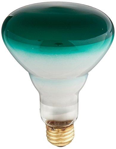 See the TOP 10 Best<br>Green Outdoor Flood Light Bulbs