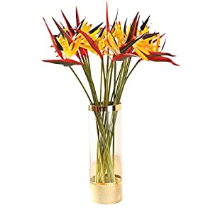 Tanshine Artificial Bird of Paradise 5 PCS Fake Flower Stems 24 Inch for Home Garden Office Decoration Yellow