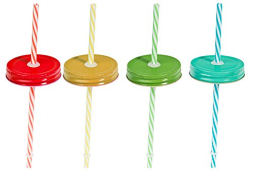 Set of Four (4) Regular Mouth Mason Jar Straw Lids with Straws (Solid)