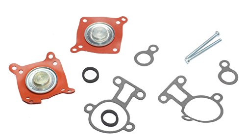 ACDelco 217-2058 Professional Fuel Injection Pressure Regulator Kit with Gaskets and Seals