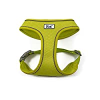 A strong and comfortable harness with our poly-weave webbing for durability With air-mesh fabric for increased comfort and breathability With adjustment for the perfect snug fit Features a reflective band to increase visibility in low light Available...