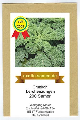 Grünkohl - Winterkohl - halbhohe Sorte - Lerchenzungen - 200 Samen