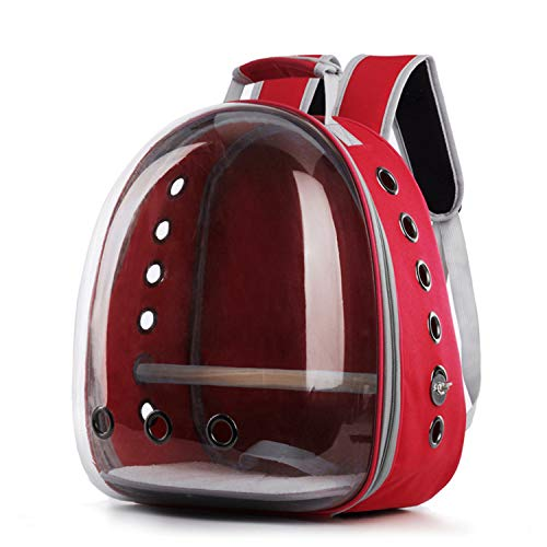Lucky Youth Bird Carrier Backpack, Bubble Bird Travel Carrier Backpack with Stainless Steel Tray and Standing Perch (Red)