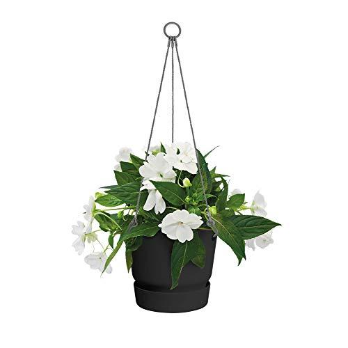 elho greenville Hanging Basket 24 – Hängender Blumentopf in Living Black mit Wasserreservoir für den Outdoor-Bereich – Runder, frostbeständiger Topf – Ø 23,9 x H 20,3 cm