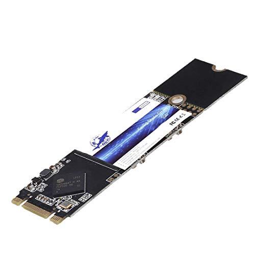 Dogfish SSD M.2 2280 256GB NGFF unità a Stato Solido Integrata PC Drive a Stato Solido Interno Destop Laptop Hard Drive M2 256GB (M.2 2280 256GB)