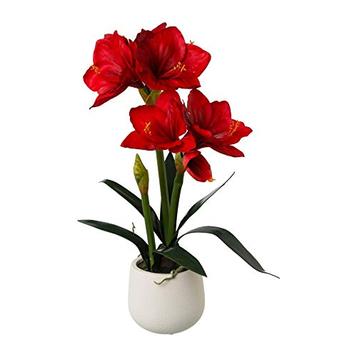 wohnfuehlidee Kunstpflanze Amaryllis, Farbe rot, im weißen Keramik-Topf, Höhe ca. 60 cm