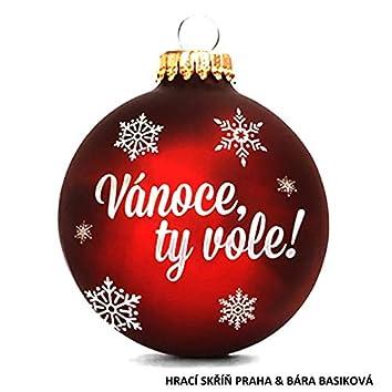 Vánoce Ty Vole