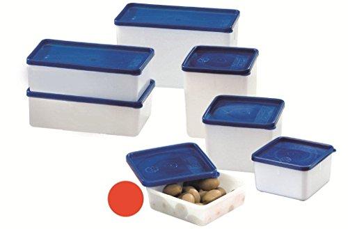 Westmark Gefrierdosen-Set, 4-teilig, Volumen je 250 ml, Kunststoff, Quadratisch: 11,3 x 11,3 x 3,6 cm, Transparent/Blau, 25042270