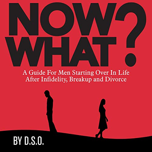Now What? Audiobook By D.S.O. cover art