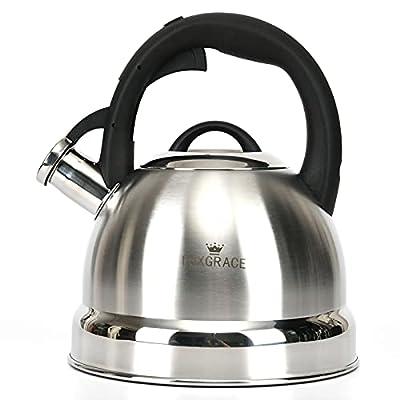 Tea Kettle -2.0 Quart Stovetop Whistling Teapot Stainless Steel Tea Pots for Stove Top Whistle Tea Pot
