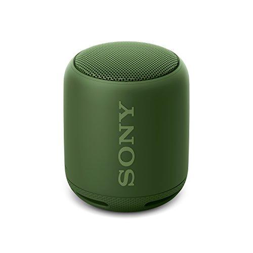Sony SRS-XB10G - Altavoz inalámbrico portátil con Bluetooth y Extra Bass, Verde