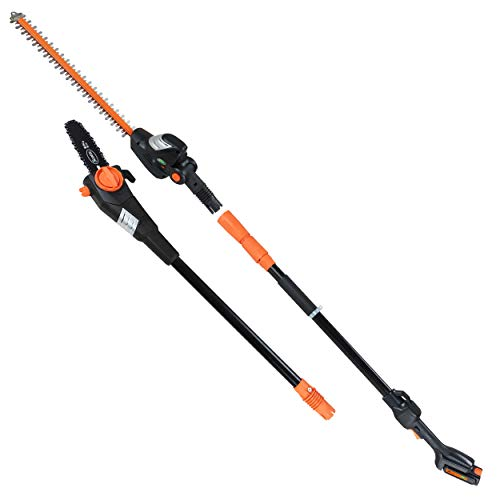 Scotts Outdoor Power Tools CLPS40020S 20-Volt 2-in-1 Cordless Covertible Saw/Pole Hedge Trimmer, Black