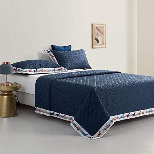 Rubyurphy Couette en Coton luxueux, couette douce et Confortable, Très Grande, Couverture et taie d'oreiller-Bleu_96x96 pouces