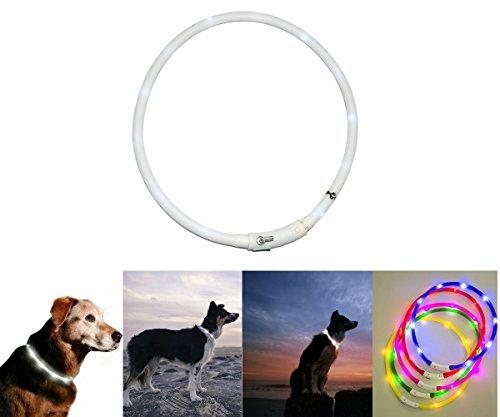 Case Wonder LED Leuchthalsband Hunde Halsband - USB Wiederaufladbar - Längenverstellbarer Haustier Sicherheit Kragen / Blinkende Kragen Deluxe für Hunde und Katzen- 3 Lights Mode & 8 Farben (Weiß)