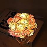 AZCX Luces de jardín Solar, 30 Luces de Cadena de Hadas de Rosa LED, iluminación a Prueba de Agua a Prueba de Agua para la campaña de Flores, césped, Patio, festón, Fiesta de Verano