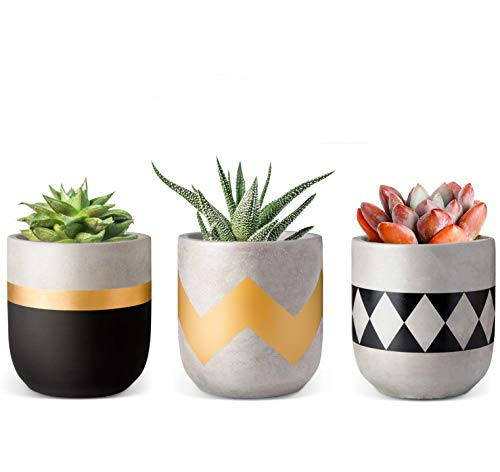 Concrete Planters, ROSOLI 3 Inches Mini Cement Succulent Pots Modern Flower Concrete Planter Pots Container for Succulents, Cactus, African Violets, Herbs or Small Plants with Drainage Hole, Set of 3